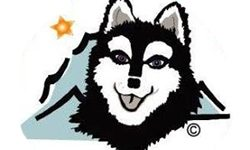 Learn more about the Alaskan Klee Kai Association of America