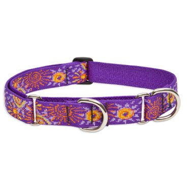 Lupine Pets are known for their high quality martingale collars