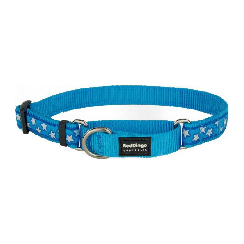 Red Dingo Martingale collar
