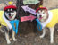 Cutest Alaskan Klee Kai Halloween Costumes